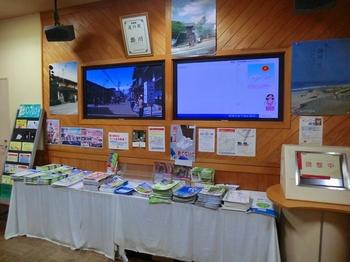 2012michinoekikakegawanaka.jpg